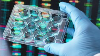 Genetic testing for breast cancer could benefit more women