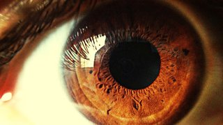 How the eyes and pupils provide clues to brain health after stroke – and maybe after concussion