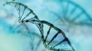 Genetic Counseling: Get the Answers You Need