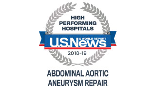 2018 Aortic Repair High Performing