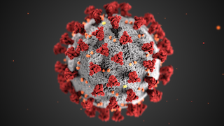 COVID-19_Virus_Image_320x180.png