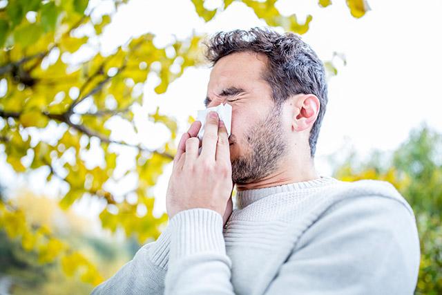 north-texas-allergy-season 640x427