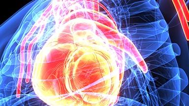 Clinical Heart Center - Interventional Cardiology 303