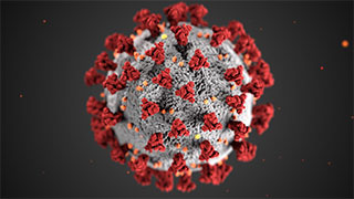 coronavirus-v2-320x180.jpg