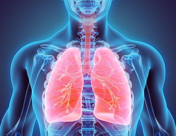 emphysema lungs 600.jpg