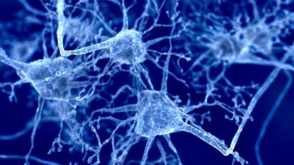 Neurology Clinic - General Neurology | Dallas, Texas | UT