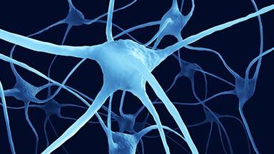 Neurology Clinic - Neuromuscular Disorders