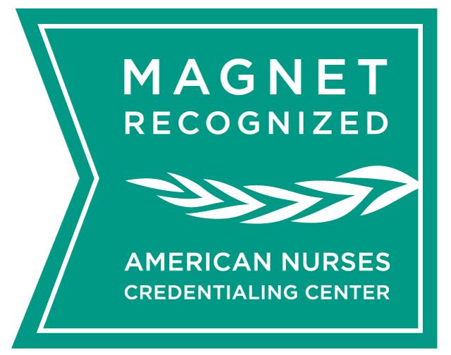 Nursing Magnet Icon
