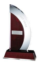 Press Ganey Award