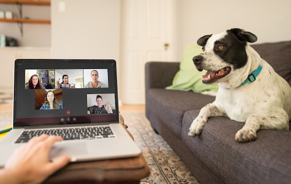 Social distancing video chat