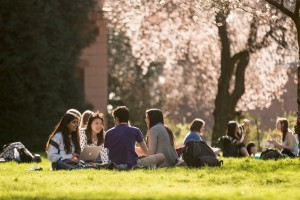 Januart 2015 Provost Report; Students in the Quad