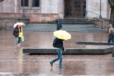 Hard rain comes down on the University of Washington, Seattle campus.