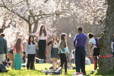 Students in the Quad on a sunny day.