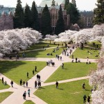 Students Walking in UW Quad
