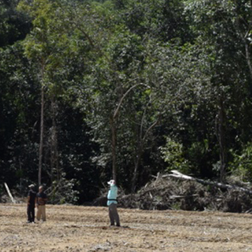Image of land being cleared for a farm plot in rural Indonesia