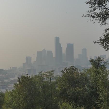 Image of wildfire smoke