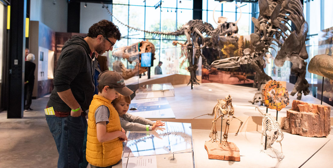Father and sons look at dinosaur fossils