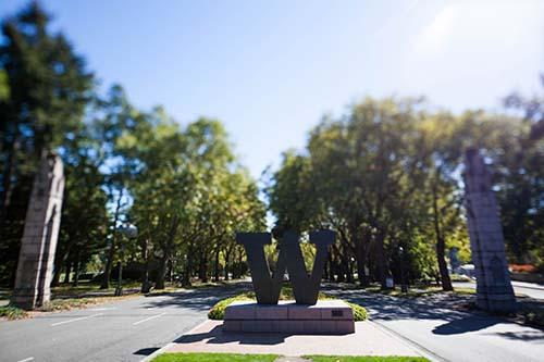 UW Campus bronze W