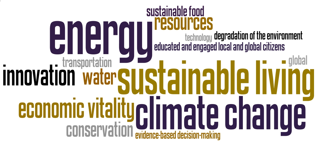 Environmental Sustainability and Clean Energy word cloud