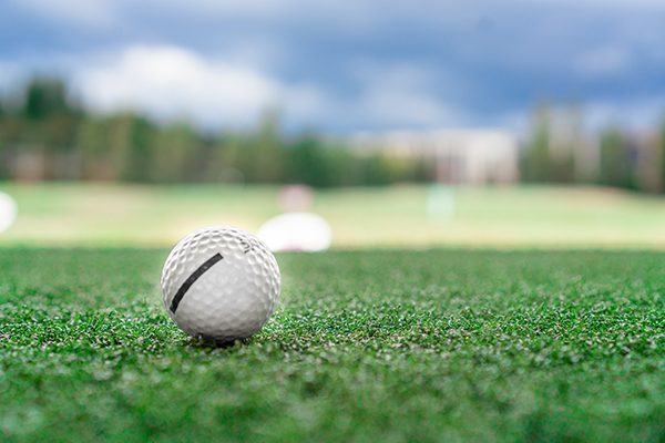 closeup shot of golfball on green
