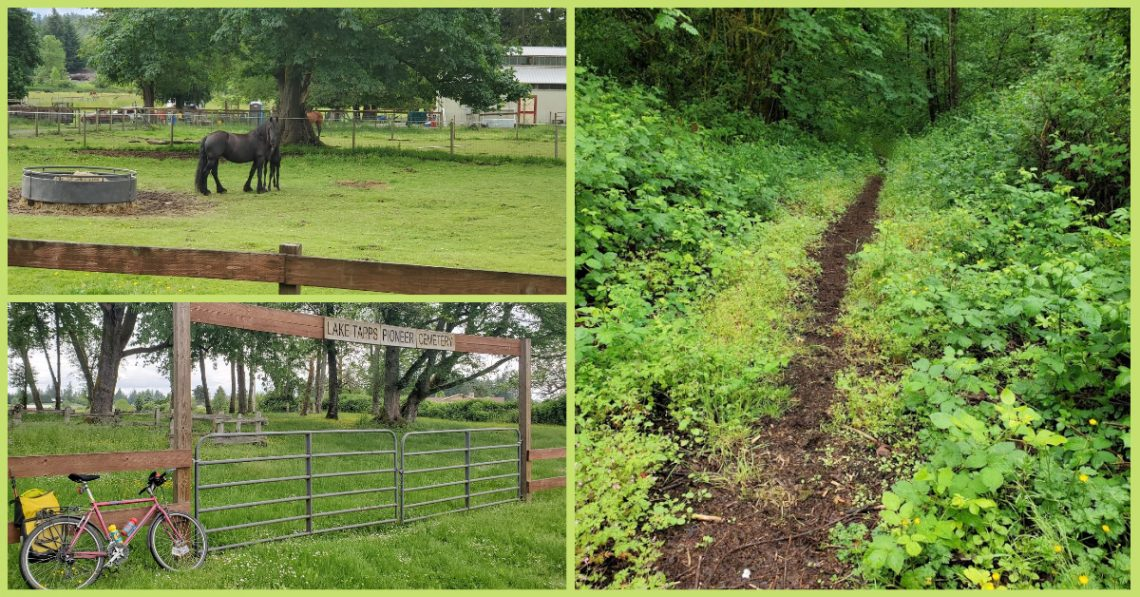 """Photos from the cycling loop from Auburn to Enumclaw courtesy of Greg Barnes. They depict horses in a field, a trail leading into the woods, and a bike resting near a sign that reads """"Lake Tapps Pioneer Cemetery."""""""