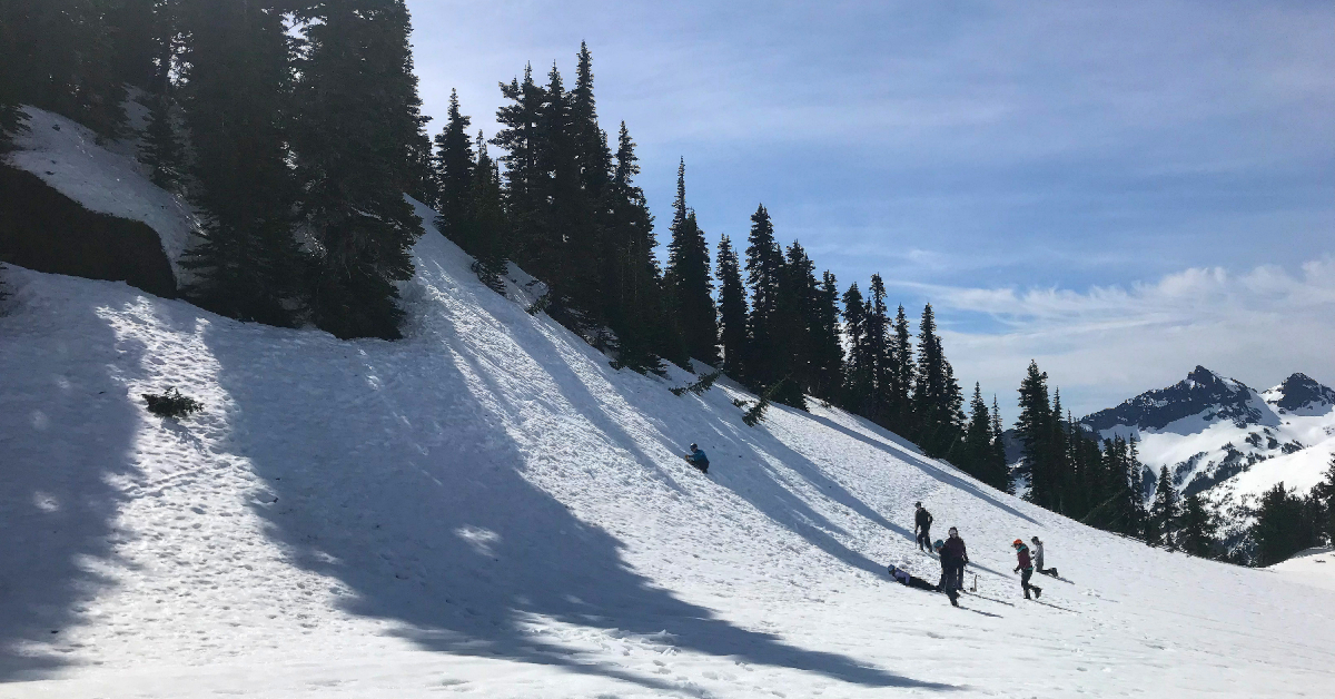 Participants play in the snow during a snow camping trip with blue skies and pine trees