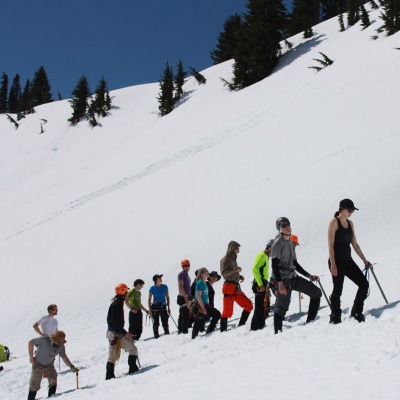 A group of UWild participants hikes through the snow in a line, a blue sky and trees behind them.