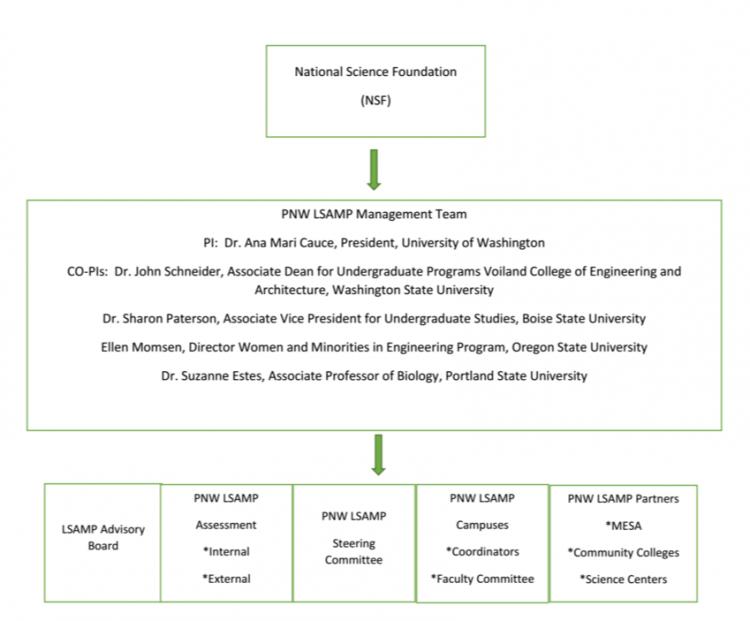LSAMP Organization Chart 2016