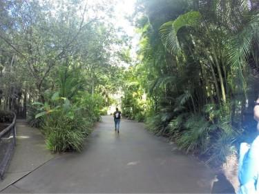 Yuliana walking through this beautiful zoo.