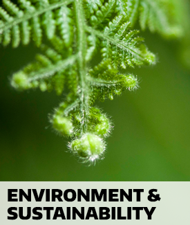 Environment and Sustainability lectures