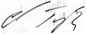Ed Taylor's Signature