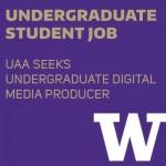 Graphic for undergraduate digital media producer