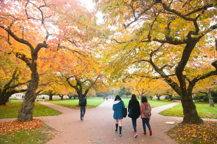 Photo of students walking in the Quad in the fall