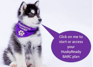 "Graphic of Husky dog saying ""click here to access your HuskyReady BARC Plan"""