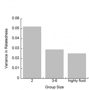 Data graph showing high variance in adult relatedness in smaller groups and lower variance in adult relatedness for larger groups.