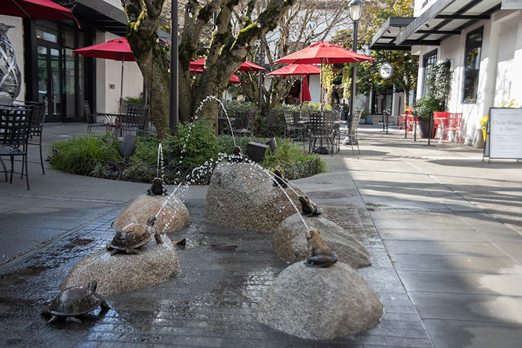 A fountain at University Village