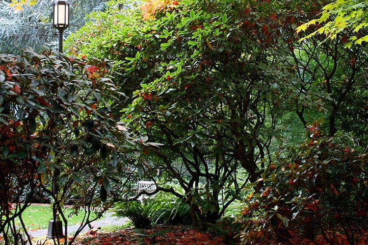 Grieg Garden