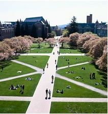 A picture of the quad in spring time.