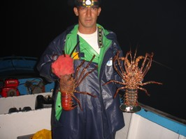 An artisanal fisher in the Galapagos Archipelago, Ecuador, holds red and green spiny lobsters from a fishery that has been co-managed since 1998. The lobsters are harvested in subtidal rocky habitat by divers using snorkels or breathing tubes called hookahs. | Credit: Mauricio Castrejón /U of Dalhousie