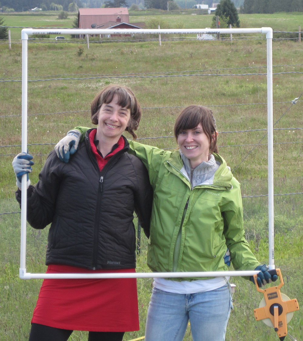 Graduate students Karen Regan, biology, and Rachel Mitchell, forest resources, hold a frame of PVC pipe that goes on the ground as a step in measuring species abundance. Credit required: University of Washington