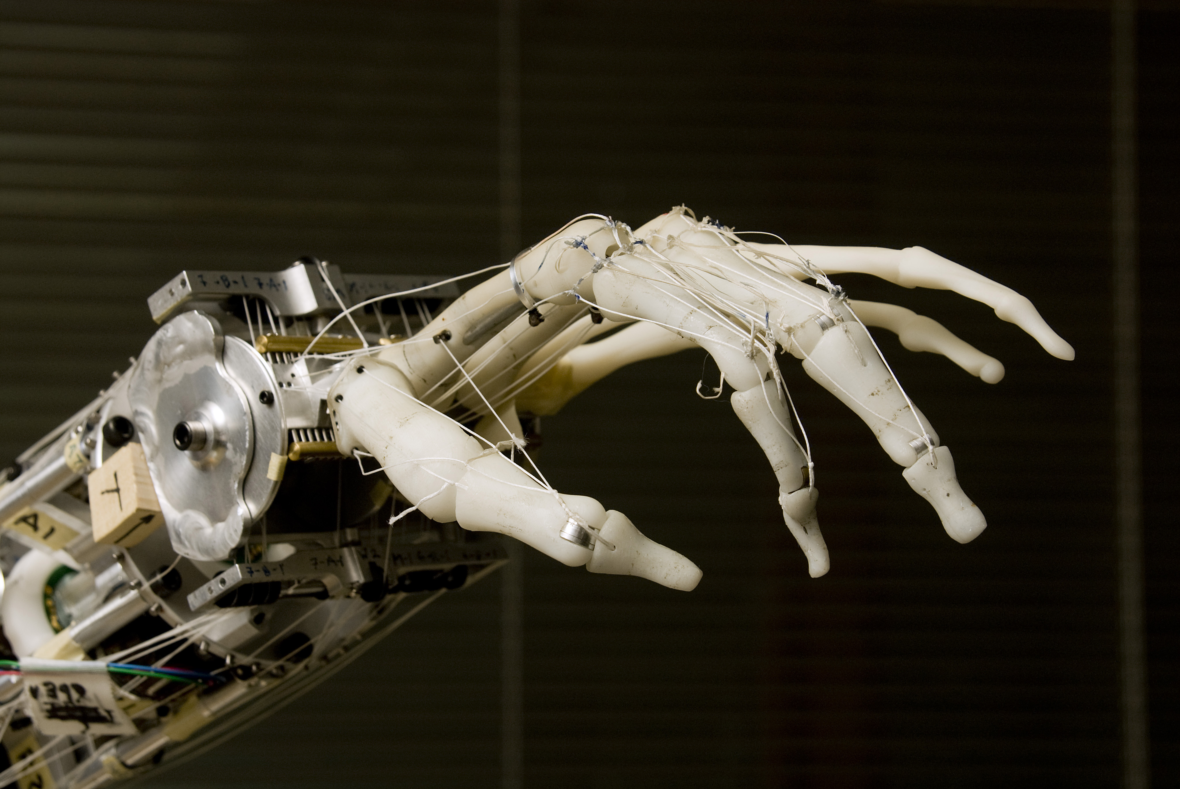 The Neurobotics Lab's prosthetic hand is a close replica of an actual human hand. Researchers are working to integrate it with the human nervous system.