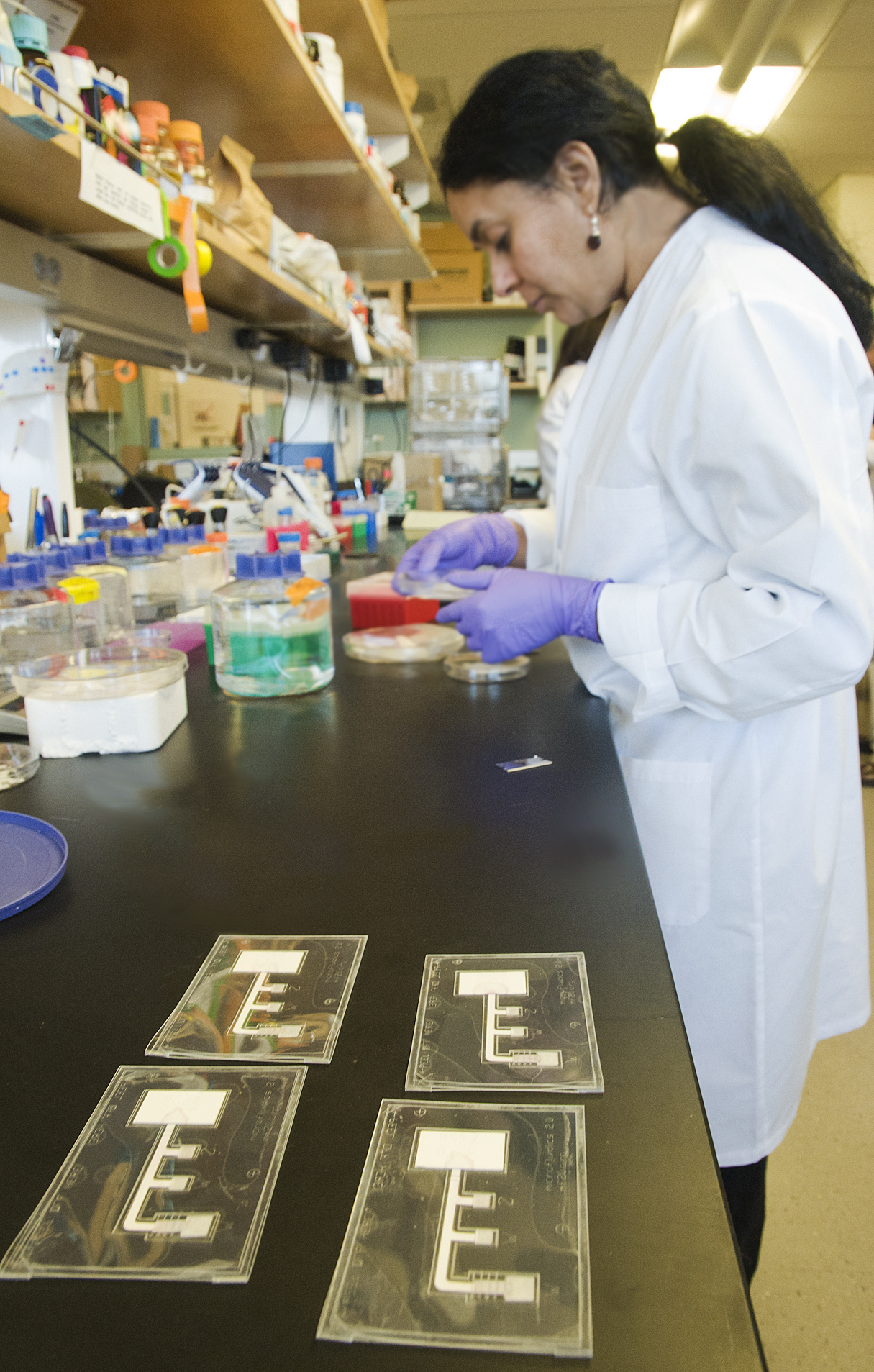 Researchers in this UW lab are working toward paper versions of infectious disease diagnostic tests.