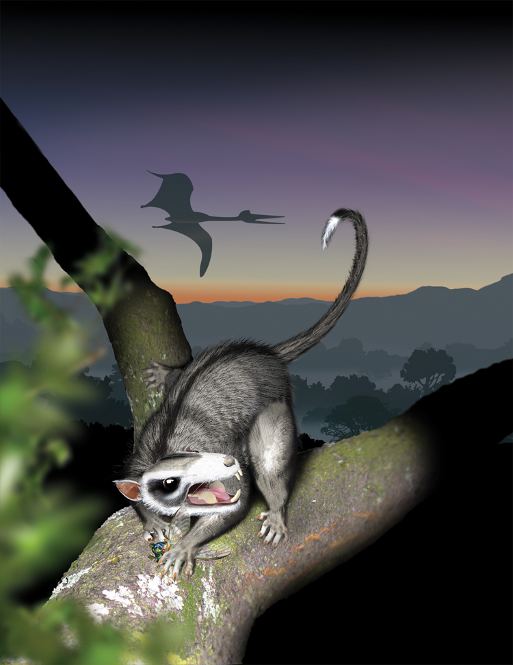 An artist's conception depicts a multituberculate in its natural habitat at the time of the dinosaurs.