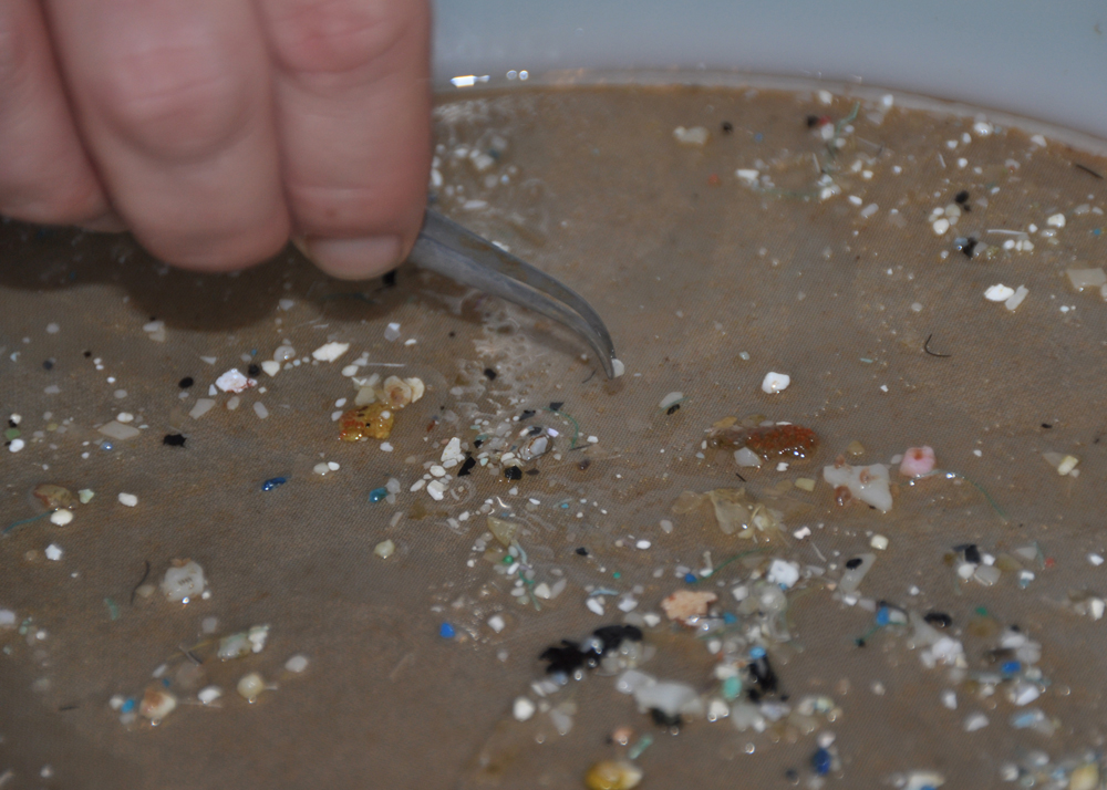 Pieces of plastic debris found in the oceans are smaller than many people think. Most are measured in millimeters.