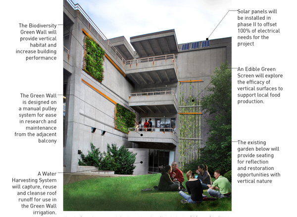A rendering of the Biodiversity Green Wall, Edible Green Screen + Water Harvesting Demonstration Project on the southeast side of Gould Hall.