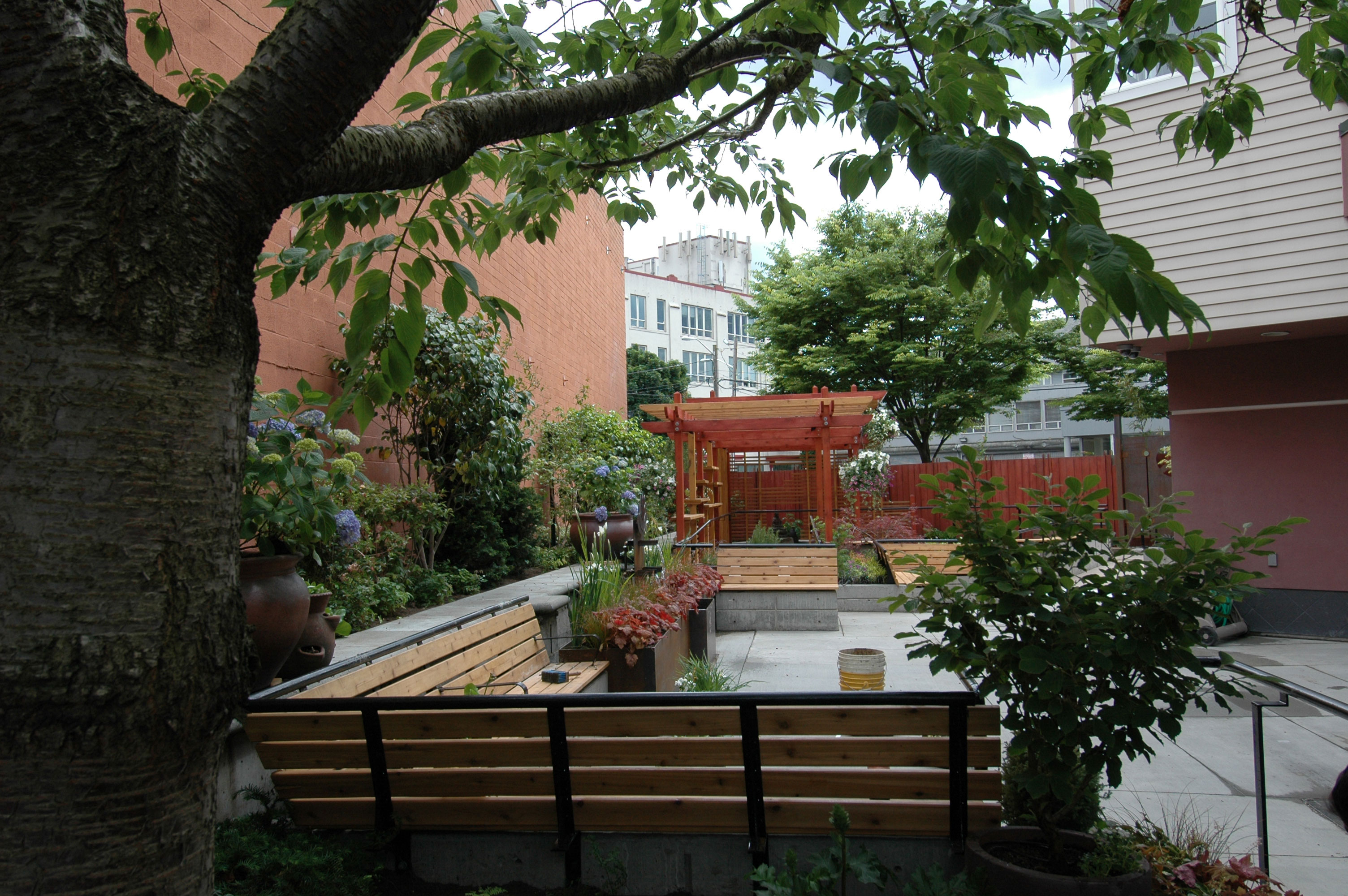 Nikkei Manor, An Assisted Living Community In Seattle, Has A New Garden  Designed