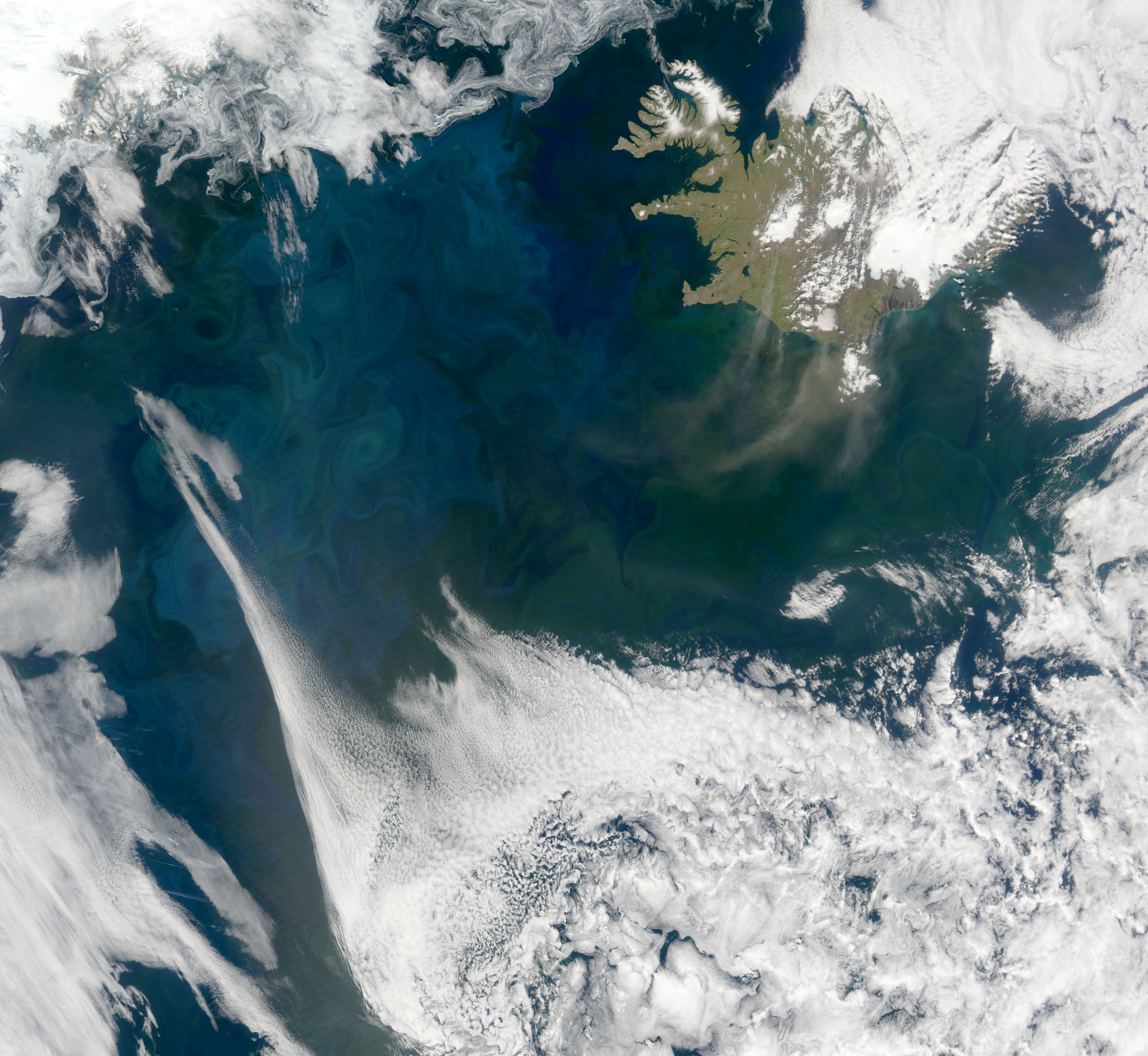 A satellite image shows the different kinds of phytoplankton, some blue and some green, that bloom and get carried around the North Atlantic by swirling eddies.