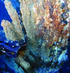 Mechanical arm reachs into spires of a hydrothermal vent