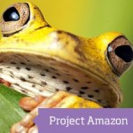 Tropical frog with logo saying Project Amazon
