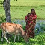 A Bangladeshi woman.
